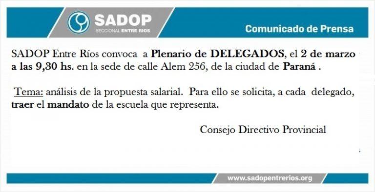 Convocatoria a Plenario Provincial de Delegados.